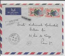 SOMALIS - 1960 - ENVELOPPE AVION AVEC AFFRANCHISSEMENT INSUFFISANT => Par PAQUEBOT De DJIBOUTI  => PARIS - Côte Française Des Somalis (1894-1967)
