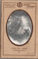 Chalon Sur Saône 1949  : Exposition Canine International   142 Pages   TTTB état - Vieux Papiers