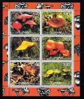 Feuillet Neuf** De 6 Timbres De Batum Champignon - Pilze