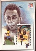 Gambia 1994 World Cup Minisheet MNH - Gambia (1965-...)