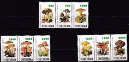 9 Timbres De Tchechenie Neufs** Champignon - Pilze