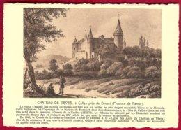 CP Gravure : Château De Vèves,à Celles Près De Dinant (Province De Namur) . Verso : Ern.Thill - Dinant