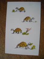 CPM Roald Dahl, Esio Trot, Tortoise - Hedendaags (vanaf 1950)