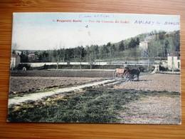 Cpa Colorisée MAULE PROPRIETE BARRE VUE DU CHEMIN DU RADET 1919 - Maule