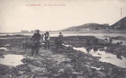 50   CAROLLES  :  LA  COUPE  DES  VARECHS  . - Andere Gemeenten