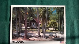 Malaisie - Pahang - Malaysia
