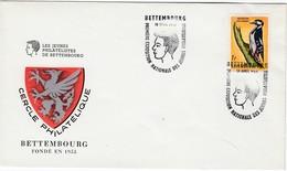 LUXEMBURG 1965 - MiNr: 637 Beleg Mit SStmp. Bettembourg - Luxemburg