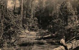 GUYANE - BRITISH GUIANA - Takatu-Creek - Cartes Postales