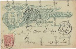 CONEGLIANO (TREVISO) - Produzione Giulio Buquicchio  - Vini - Olii - Mandorle - Carubbe 1913 - Treviso