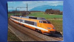 CPM TRAIN TGV SNCF PARIS SUD EST MINIREX AG - Trains