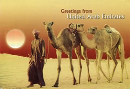 United Arab Emirates - United Arab Emirates