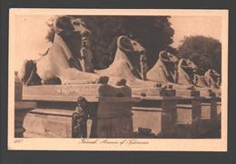 Karnak - Avenue Of Sphinxes - Ed. Lehnert & Landrock , Cairo - Autres