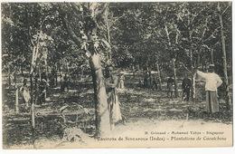 Environs De Singapour Plantations De Caoutchouc Hevea . P. Used Singapore . Grimaud Mohamed Yahya - Malaysia