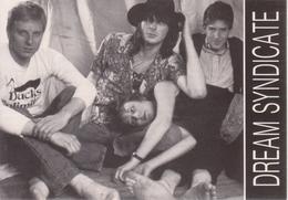 ROCK ROADS Giulianova 1987 - DREAM SYNDICATE - Cantanti E Musicisti