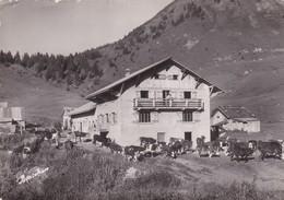 74 / LA ROCHE  SUR FORON / CHALET RESTAURANT DE BALME / CIRC 1958 / TAMPON DU CHALET AU DOS - La Roche-sur-Foron