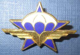 1° Régiment De Chasseurs Parachutistes, émail, Dos Guilloché - Armée De Terre