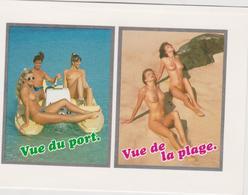 Humour :   Vue  Du  Port , De La  Plage , Pédalo , Sein Nue ( Année 2000) - Humour