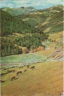 ANDORRA - SOLDEU. (scan Verso) - Andorre