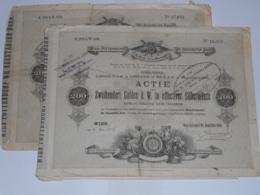 ACTION LOT DE 2 ACTIONS CHEMINS DE FER AUTRICHE - WIEN - POTTENDORF Du 06 Juin 1874 - Railway & Tramway