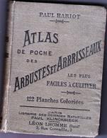 """Paul Hariot_"""" ATLAS De Poche Des Arbustes Et Arbrisseaux_122 Planches Coloriées_181 Pagine-Paris 1904- - Other"""