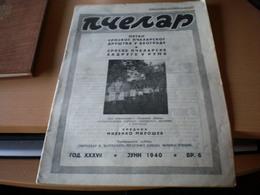Pcelar  Organ Srpskog Pcelarskog Drustva  Beograd I Ruma 1939 Newspapers About . Bee Br 6 - Books, Magazines, Comics