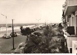 11 - PORT LA NOUVELLE - LA PROMENADE ET LA PLAGE - Port La Nouvelle