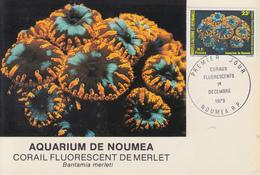 Carte  Maximum  1er Jour   NOUVELLE CALEDONIE   Coraux  Fluorescents   1979 - Tarjetas – Máxima