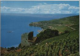 Vignoble De Lavaux, Tour De Marsens, Cully - Photo: Izard - VD Vaud