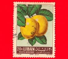 LIBANO- Libanon - Usato - 1962 - Frutta - Fruit - Mela Bianca - Pomme - Apple - 20 - Libano