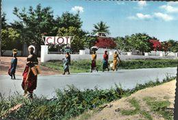 CARTE POSTALE D'AFRIQUE - BANGUI - CENTRAFRIQUE - Central African Republic
