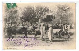 CPA-ALGERIE-1908-ALGER-MAISON-CARRÉ-BELLE ANIMATION-LE MARCHE AUX ANIMAUX- - Algiers