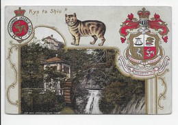 Kys Ta Shiu - Manx Camera Series - Isle Of Man