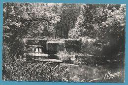 DORDIVES - Les Bords Du Loing Le Pont Et Le Barrage De La Goulette - Photo Véritable - Dordives