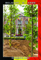 Carte Postale, REPRODUCTION, ASSE (21), Flemish Brabant, Belgium - Bâtiments & Architecture