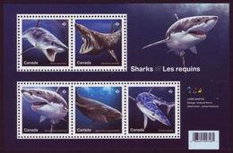 Canada 2018 The Sharks   Sheetlet Of 5 MNH - Blocs-feuillets