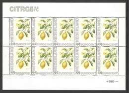 Nederland Postfris/MNH, Janneke Brinkman: Bloemen, Flowers, Fleures. Citroen - Pays-Bas
