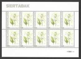 Nederland Postfris/MNH, Janneke Brinkman: Bloemen, Flowers, Fleures. Siertabak - Nederland