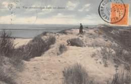 Vue Panoramique Dans Les Dunes - Blankenberge
