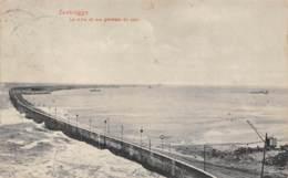 ZEEBRUGGE - Le Môle Et Vue Générale Du Port - Zeebrugge