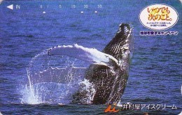 RARE Télécarte Japon / 110-011 - ANIMAL - BALEINE - WHALE Japan Phonecard Crème Glacée Ice Cream - WAL TK - BALLENA 310 - Delfines