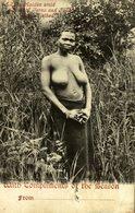 "A ZULU MAIDEN AMID   "" SEINSNUSASIA "" , AFRICA Y AMERICA - Afrique Du Sud, Est, Ouest"