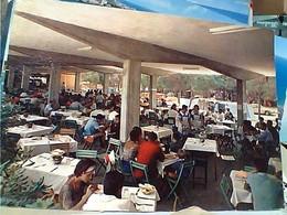 PUNTA MARINA DI RAVENNA Terme Campeggio Villagio Dei Pini RISTORANTE   VB1962 GW4728 - Ravenna