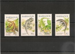 BARBADES : Faune: Lézards/Lizards  Année 1988  N°Y/T: 723/726**Côte : 15,50 € - Barbados (1966-...)