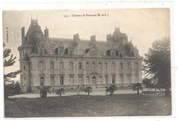 353. CHATEAU DE PUANCE . CARTE NON ECRITE - France