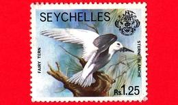 SEYCHELLES - Usato - 1980 - Uccelli - Zil Elwannyen Sesel - Fairy Tern (Sternula Nereis) - 1.25 - Seychelles (1976-...)