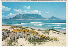 Table Mountain From The White Beach Of Bloubergstrand. Cape Town - (South Africa) - Zuid-Afrika