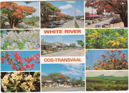 White River - Eastern Transvaal, South Africa - Witrivier, Oos-Transvaal - (Multiview) - Zuid-Afrika