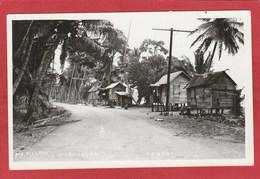 CPA: Antilles - Trinidad - Tobago - Roxboro - Trinidad