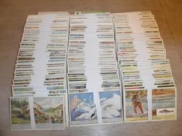 Beau Lot 150 Series De LIEBIG ( 900 Chromos ) Langue Française   Mooi Lot 150 Series LIEBIG ( 900  Prenten ) Franse Taal - Liebig