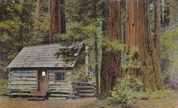 Etats-Unis > CA - California > The Log Cabane Muir Woods  Mt Tamalpais - Andere